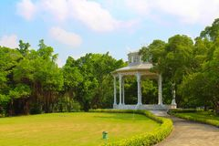 Lumpini Lake at Lumpini Park, Thailand. Lumpini Lake is the center of Lumpini Park in Thailand. The Park is known for its flora and fauna. This picture features Stock Photo