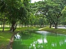 Lumpini Park. In Bangkok,Thailand stock photography