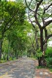 Lumpini-Park in Bangkok Stockbilder
