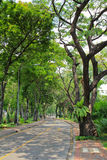 Lumpini park in Bangkok Stock Images