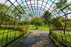 Lumpini Park Landscaping in Bangkok, Thailand. Royalty Free Stock Photos