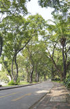 Lumpini Public park Stock Images