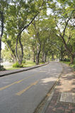Lumpini Public park Royalty Free Stock Photo