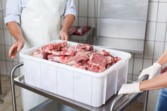 Lumps of meat in a container Stock Image