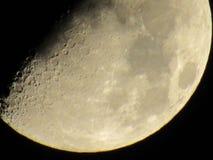 luna stockbild