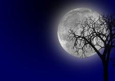 Luna Fotos de archivo libres de regalías