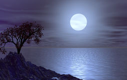 Luna. Water landscape with tree at night  - 3d illustration Stock Photos