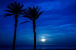 Luna a Agadir, Marocco immagine stock