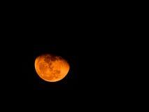 Luna anaranjada Imágenes de archivo libres de regalías