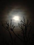 Luna attraverso le nuvole Immagini Stock