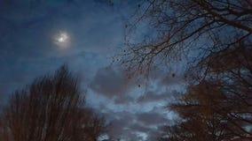 Luna azul Imágenes de archivo libres de regalías