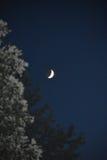 Luna cuarta en el cielo oscuro Imágenes de archivo libres de regalías