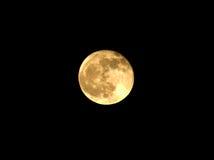 Luna de la noche Foto de archivo libre de regalías