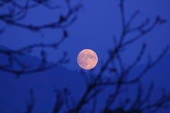 Luna de Voll Imágenes de archivo libres de regalías