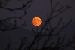 Luna de Voll Fotos de archivo