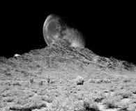 Luna del deserto Immagine Stock