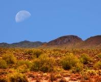 Luna del deserto Immagini Stock