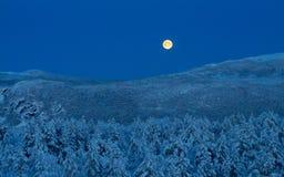 Luna del invierno Imágenes de archivo libres de regalías