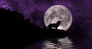 Luna del lupo Immagini Stock Libere da Diritti