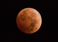 Luna del sangue di eclissi lunare Immagini Stock