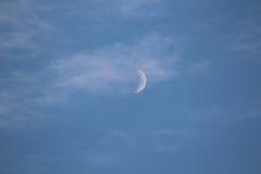 Luna del verano imagen de archivo libre de regalías