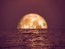 Luna della razza pura arancione-chiaro sulla luce di luna di riflessione del mare su sur Fotografia Stock Libera da Diritti