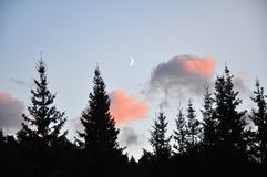 Luna di fiaba di luce della luna giovane immagine stock libera da diritti