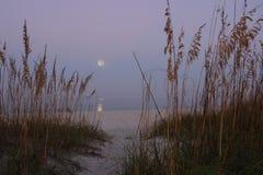 Luna di raccolto sopra il golfo del Messico Immagini Stock
