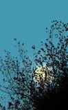Luna dietro le foglie Priorità bassa astratta, illustrazione Fotografia Stock Libera da Diritti