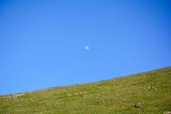 Luna en cielo azul sobre la montaña Fotografía de archivo libre de regalías