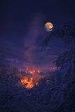 Luna en el invierno Fotos de archivo