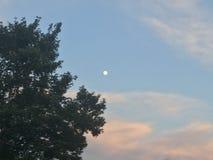 Luna en la puesta del sol Fotografía de archivo libre de regalías