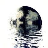 Luna estupenda en la reflexión del agua en el fondo blanco Fotos de archivo