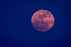Luna estupenda roja Foto de archivo libre de regalías