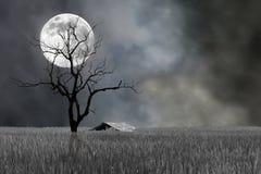Luna estupenda y árbol estéril con la choza en el festival de Halloween de la noche fotografía de archivo