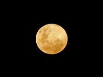 Luna gialla Immagini Stock