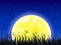 Luna gialla enorme con il prato dell'erba illustrazione vettoriale