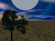 Luna Llena Fotografía de archivo