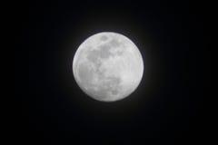 Luna Llena brillante en abril Imagen de archivo