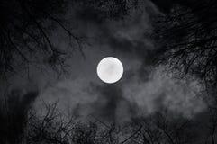 Luna Llena brillante en el cielo nocturno y las nubes de noche siniestras - paisaje misterioso de la noche en tonos blancos y neg Imágenes de archivo libres de regalías