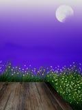Luna Llena de la luciérnaga y de la hierba Fotografía de archivo