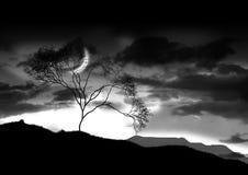 Luna luminosa Immagini Stock