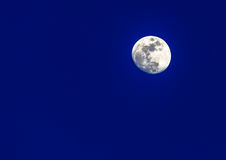 Luna luminosa Immagine Stock