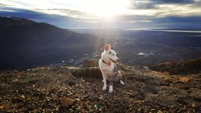 Luna Out hiking royalty free stock images