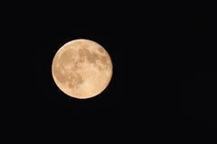 Luna piena Immagini Stock