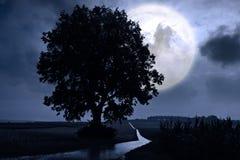Luna piena Fotografie Stock Libere da Diritti