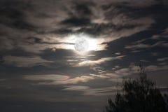 Luna piena in cielo scuro Fotografia Stock Libera da Diritti