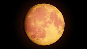Luna piena con le fasi stock footage