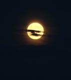 Luna piena con le nubi Immagini Stock