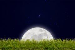 Luna piena con le stelle ed il campo della collina verde sul cielo di oscurità Immagini Stock